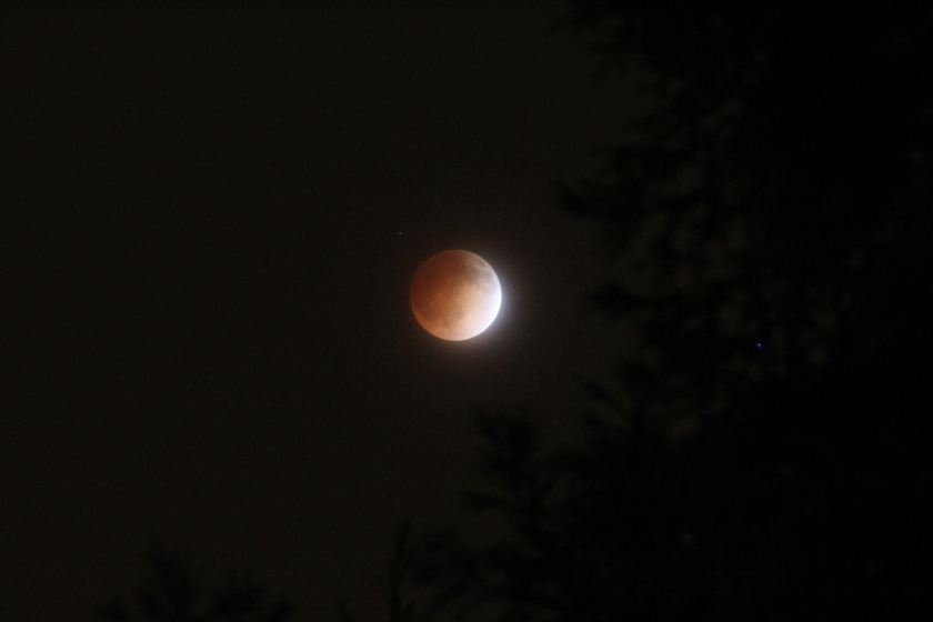 a shot of tonight's lunar eclipse